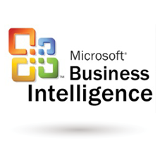 ICAN Services - Business Intelligence and Reporting